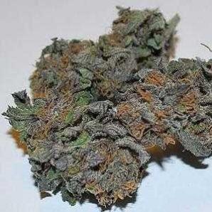 Death Star – Indica   Buy Marijuana Online   Buy Weed