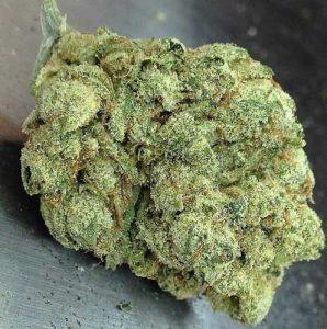 Skywalker OG – Hybrid | Marijuana Strains for sale
