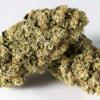 Buy Marijuana in bulk - High THC Strains