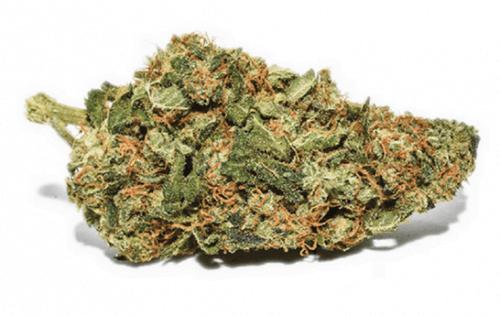 best Marijuana Strains for Chronic Pain to buy online.