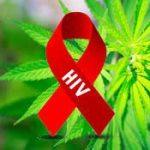 The Link between Marijuana and HIV AIDS