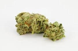 Amnesia Haze Marijuana Strain and Benefits